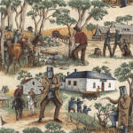 Ned Kelly 100% cotton fabric Collection
